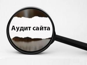 Audit_sajta