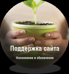 podderzhka-sayta-kiev-2