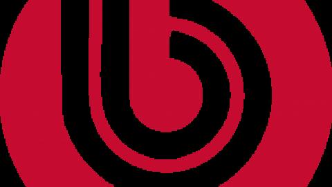 Поддержка сайтов на битриксе