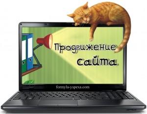prodvizhenie-sayta-dyoshevo-0