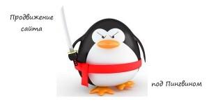 prodvizhenie-sayta-pod-pingvinom