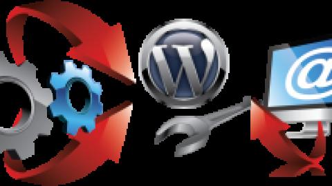 Разработка раскрутка поддержка сайтов