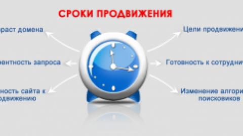 Сроки продвижения сайта в ТОП