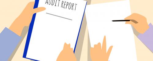 audit-site